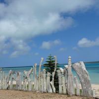 科领瓦努阿图护照移民收费调整:免收律师费!