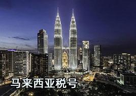 马来西亚税号